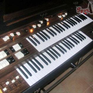 Organo anni 80
