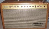 Guild Acoustic G500